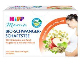 HiPP Mama fuer Schwangere und Stillende 20 x 1 5g Mama Bio Schwangerschaftstee BIO Kraeutertee mit Apfel Hagebutte und Holunderblueten