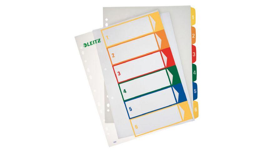 LEITZ Kunststoffregister A4 1 6