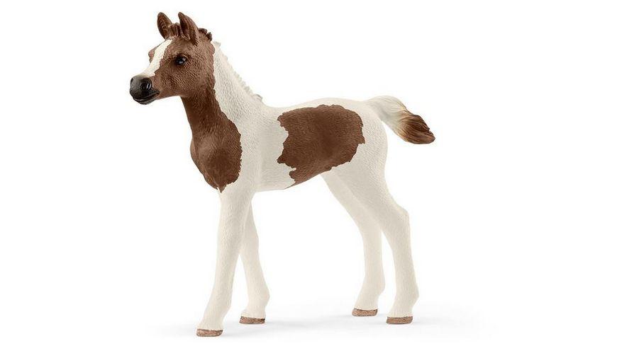 Schleich Horse Club Araber Pinto Fohlen
