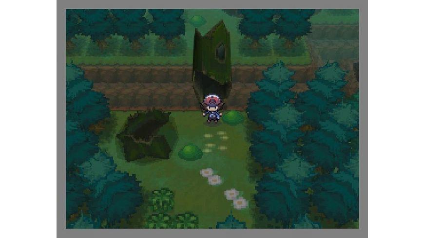 Pokemon Schwarze Edition