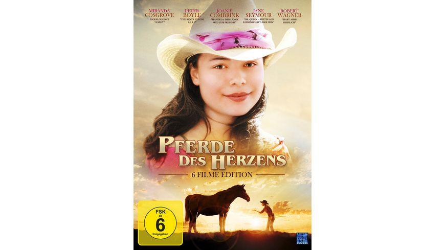 Pferde des Herzens 3 DVDs