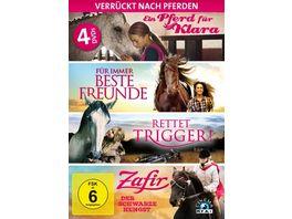 Verrueckt nach Pferden Die ultimative Pferde Box 4 DVDs