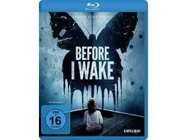 Before I Wake
