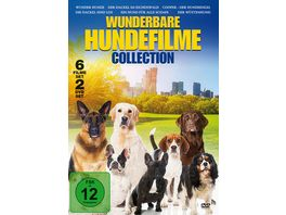Wunderbare Hundefilme Collection 2 DVDs
