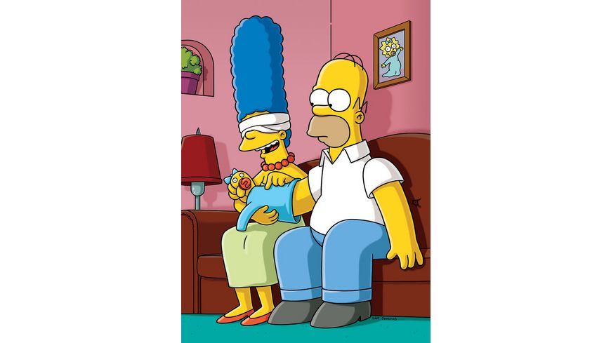 Die Simpsons Season 20 4 DVDs