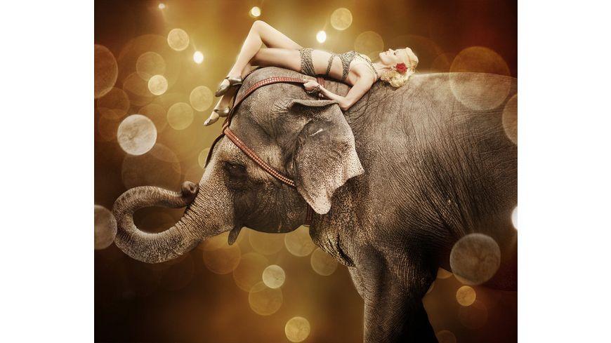 Wasser fuer die Elefanten