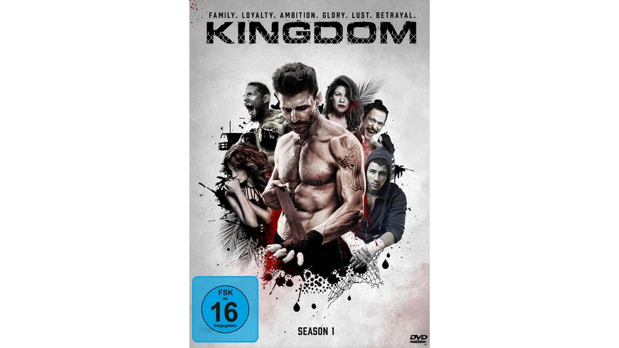 Kingdom Season 1 3 DVDs