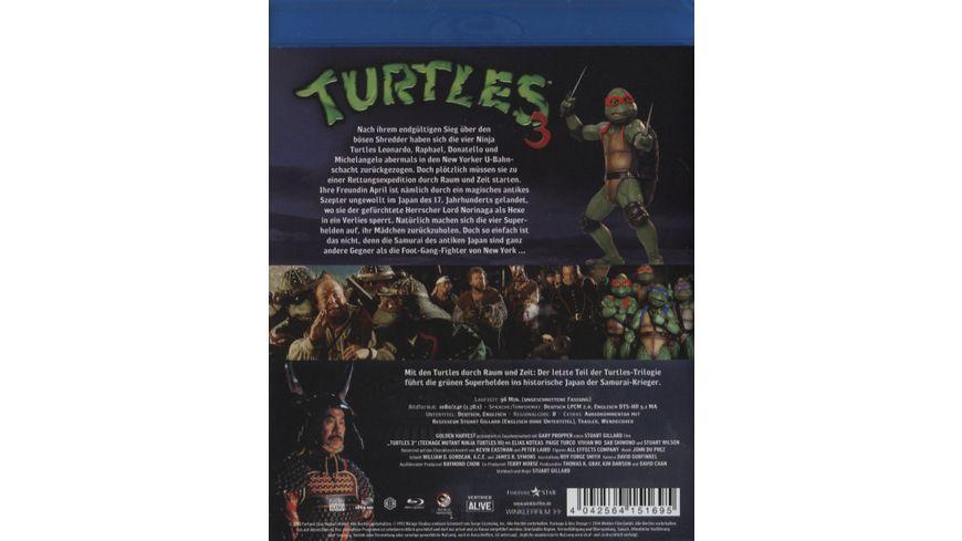 Turtles 3 Ninja Turtles