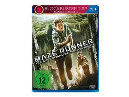 Maze Runner 1 Die Auserwaehlten im Labyrinth