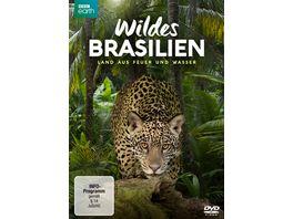 Wildes Brasilien Land aus Feuer und Wasser