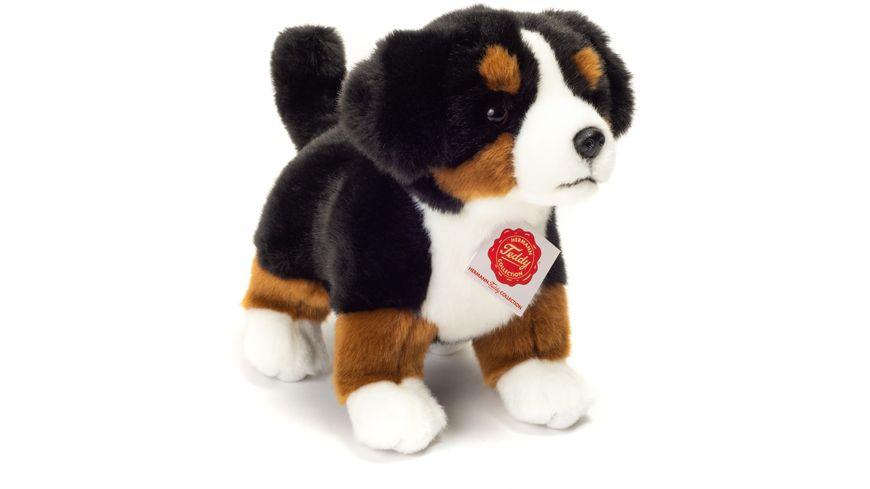 Teddy Hermann Berner Sennenhund Welpe stehend 23 cm