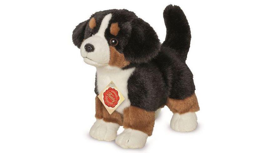 Teddy-Hermann - Berner Sennenhund Welpe stehend, 23 cm