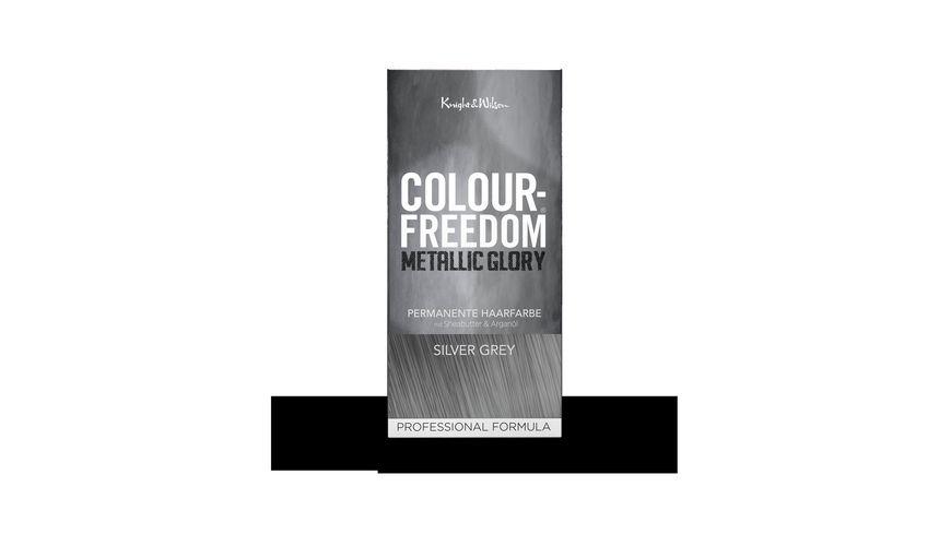 COLOUR FREEDOM METALLIC GLORY Silver Grey permanente Haarfarbe