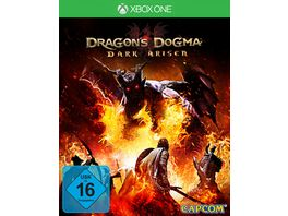 Dragon s Dogma Dark Arisen