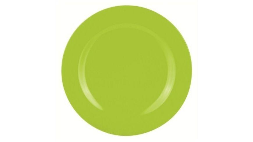 zak Salatteller BBQ gruen