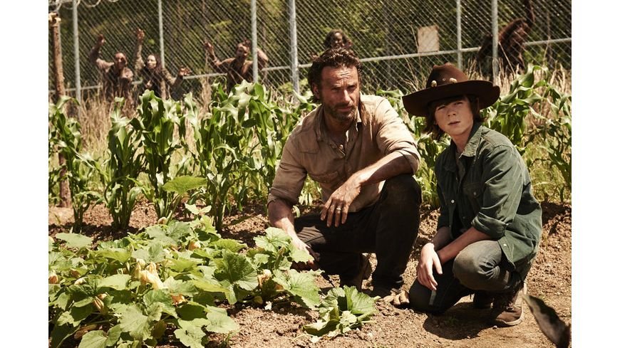 The Walking Dead Die komplette vierte Staffel Uncut Limitiert 5 DVDs