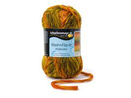 Schachenmayr Filzwolle Wash Filz it Multicolor 50g