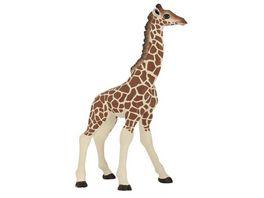 Papo Giraffenjunges 14 cm