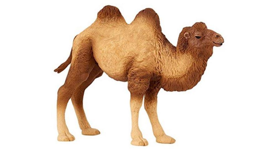 Papo Baktrisches Kamel 13 cm