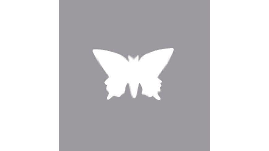 Rayher Motivstanzer Schmetterling 1 6 cm