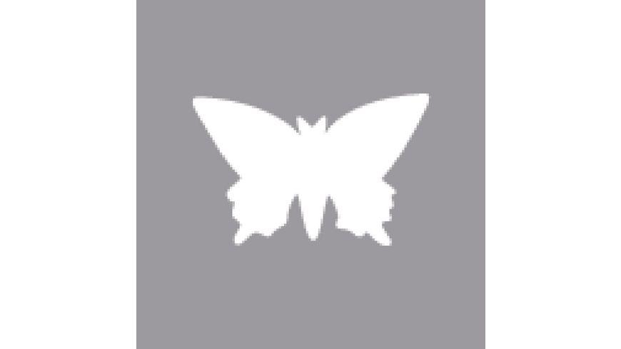 Rayher Motivstanzer Schmetterling 2 54 cm