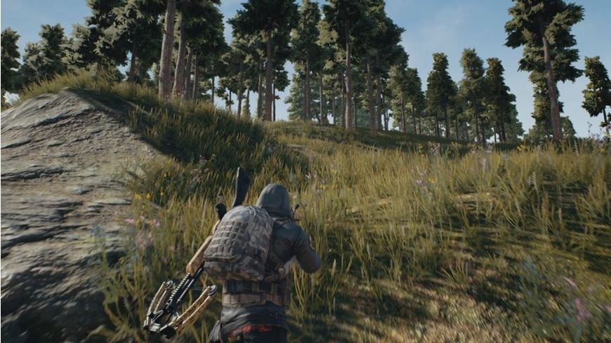 PlayerUnknown s Battlegrounds CIAB