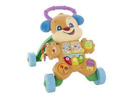 Fisher Price Lernspass Huendchens Lauflernwagen Lauflernhilfe Baby Laufwagen