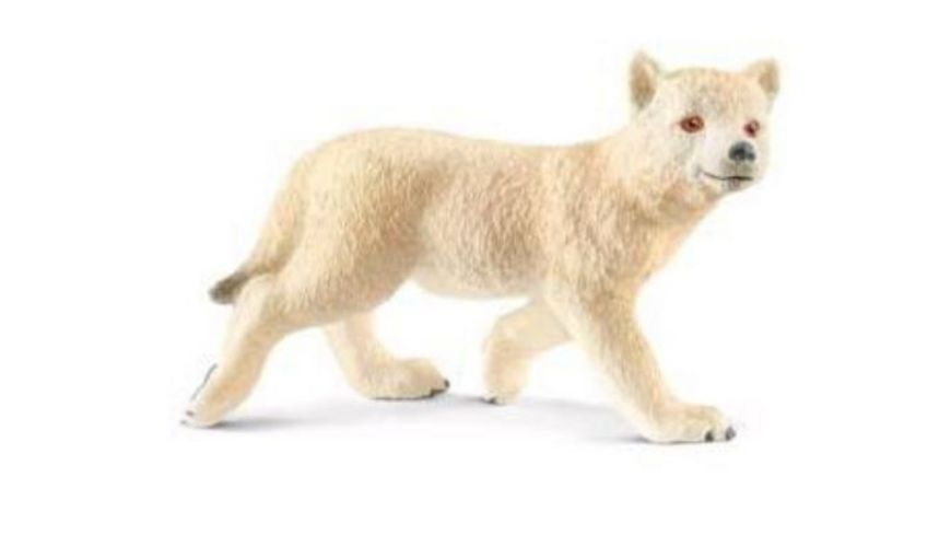 Schleich Wild Life Arktisches Wolfsjunges
