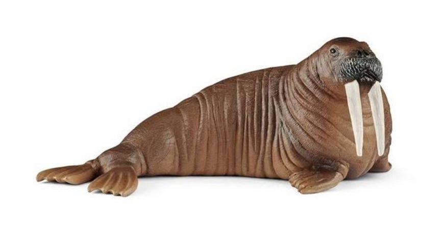 Schleich 14803 Wild Life Walross