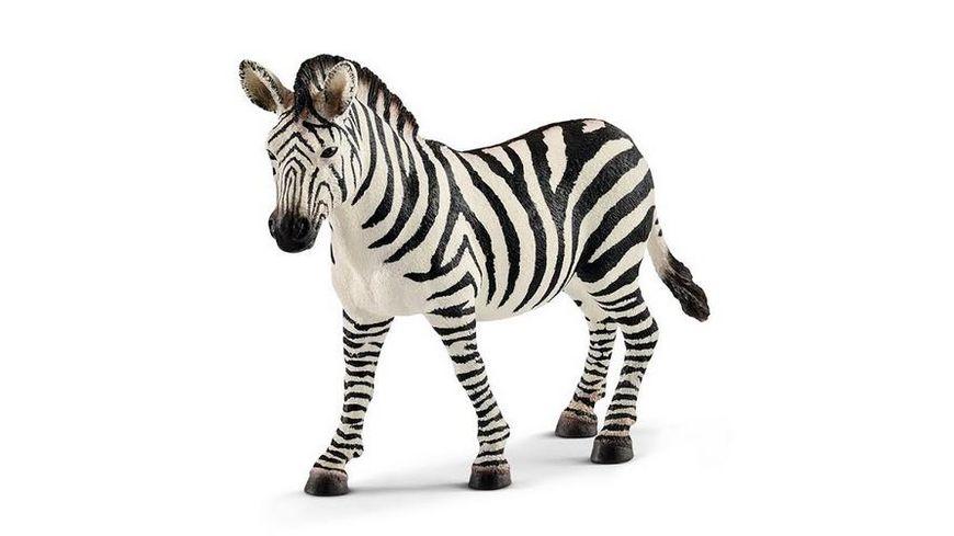 Schleich Wild Life Zebra Stute