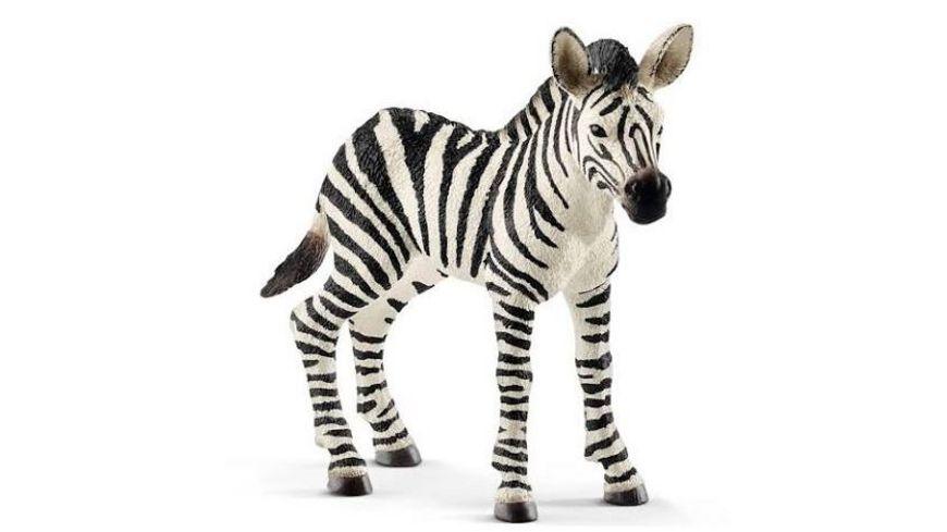 Schleich Wild Life Zebra Fohlen