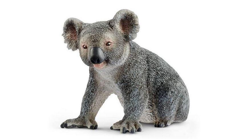 Schleich Wild Life Koalabaer