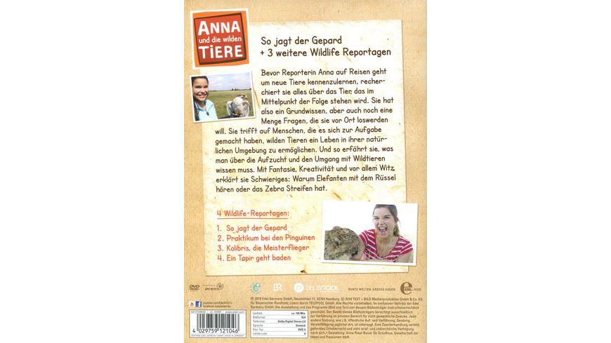Anna und die wilden Tiere Folge 1 So jagt der Gepard