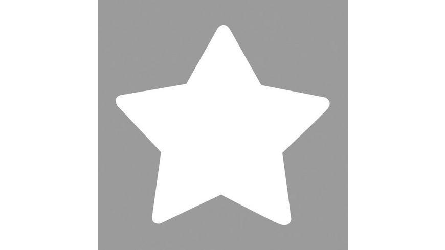 Rayher Motivstanzer Stern 3 81 cm
