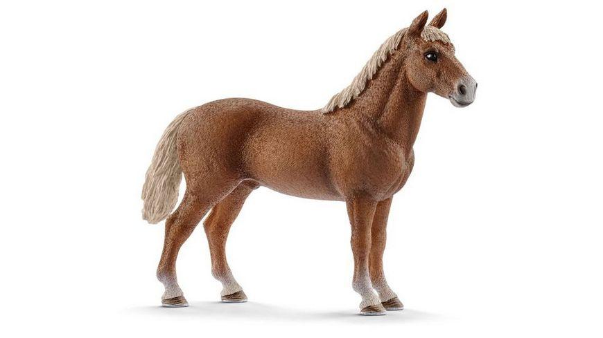 Schleich 13869 Horse Club Morgan Horse Hengst