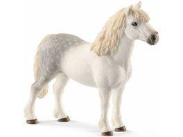 Schleich 13871 Horse Club Welsh Pony Hengst