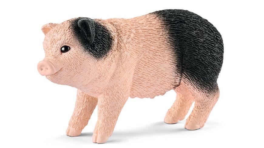 Schleich 42422 Farm World Mini Schwein Mutter und Ferkel