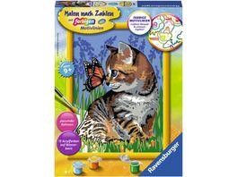 Ravensburger Beschaeftigung Malen nach Zahlen Katze mit Schmetterling
