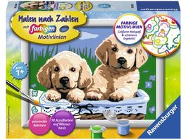 Ravensburger Beschaeftigung Malen nach Zahlen Suesse Hundewelpen