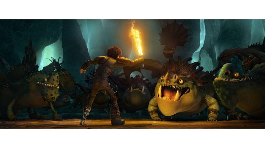 Drachenzaehmen leicht gemacht 2 Deluxe Edition Blu ray 2D