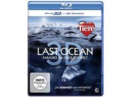 Last Ocean Paradies am Ende der Welt inkl 2D Version