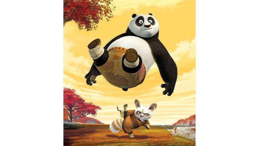 Kung Fu Panda Blu ray 2D