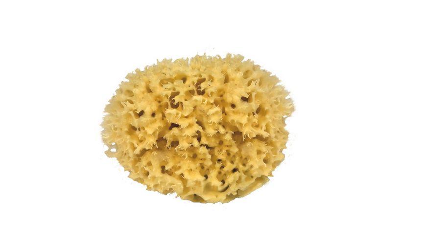 Croll Denecke Naturschwamm 10 cm