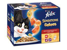 felix Katzennassfutter Sensations Gelees Geschmacksvielfalt vom Land 12x100g Portionsbeutel