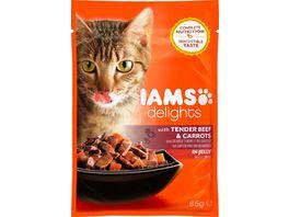 IAMS Delights Katzennassfutter mit Rind Karotten