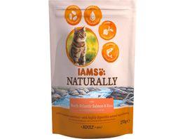 IAMS Naturally Katzentrockenfutter mit Lachs