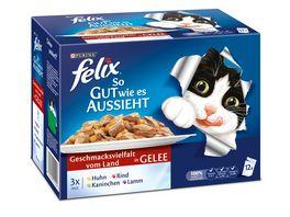 felix Katzennassfutter So gut wie es aussieht in Gelee Geschmacksvielfalt vom Land 12x100g Portionsbeutel