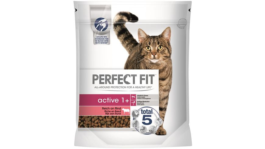 PERFECT FIT KATZE Trockenfutter ACTIVE 1 Reich an Rind