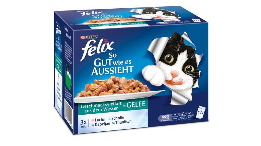 felix Katzennassfutter So gut wie es aussieht in Gelee Geschmacksvielfalt aus dem Wasser 12x100g Portionsbeutel