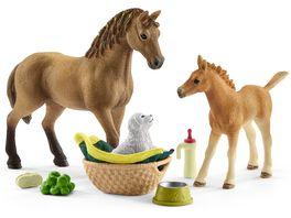 Schleich Horse Club Sarahs Tierbaby Pflege
